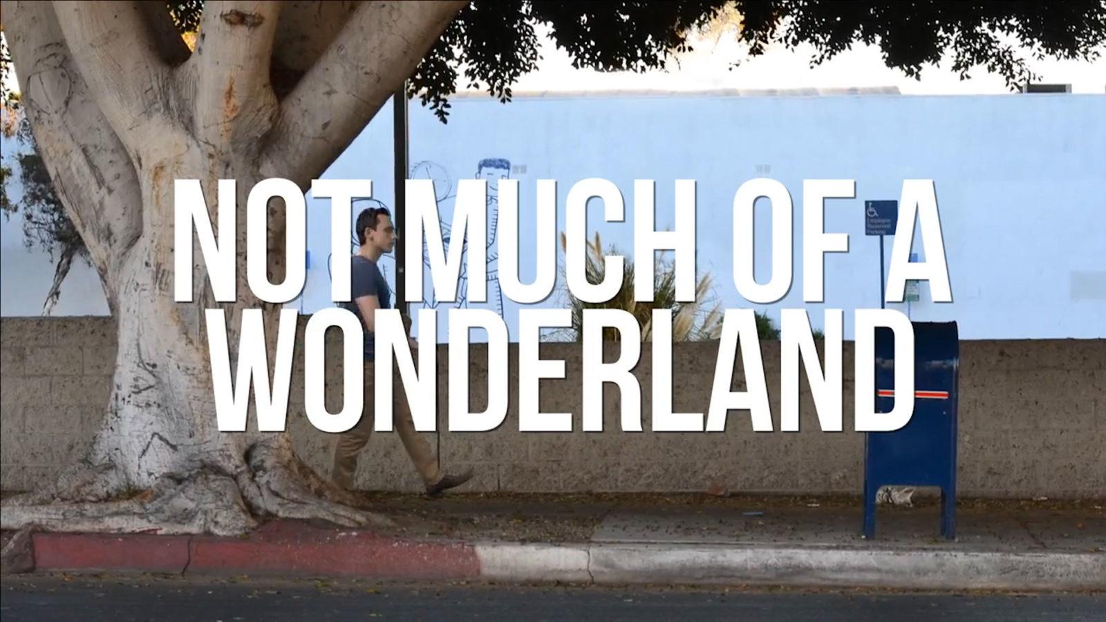 Not Much of a Wonderland